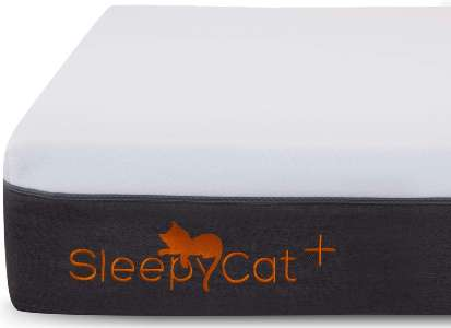 Sleepycat Orthopedic Mattress