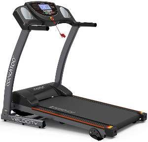 Cockatoo Velocity Steel DC Motorized Treadmill